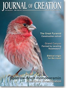 <em>Journal of Creation</em> <strong>24</strong>(3), December 2010.