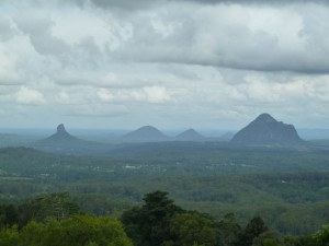 Glass House Mountains from Mary Cairncross Reserve