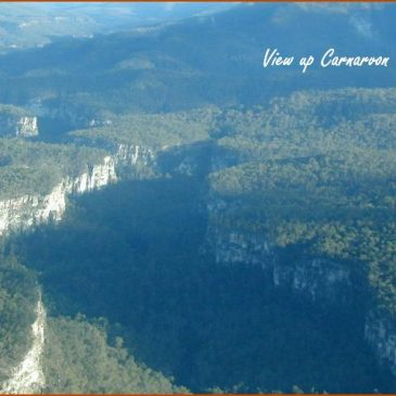 Carnarvon Gorge, Australia: monument to Noah's Flood