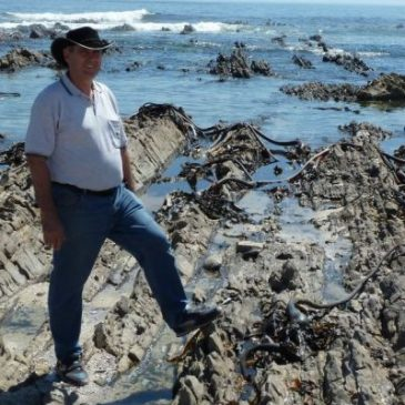 Cape Town's oldest rocks deposited rapidly from abundant water