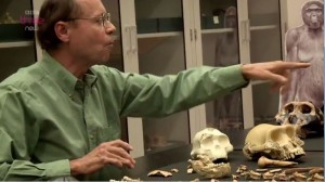 "Evolutionary biologist Tim White talking to creationists. ""Take that skull.""  Note the artists impression in the background."