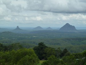 The Glass House Mountains from Mary Cairncross Scenic Reserve