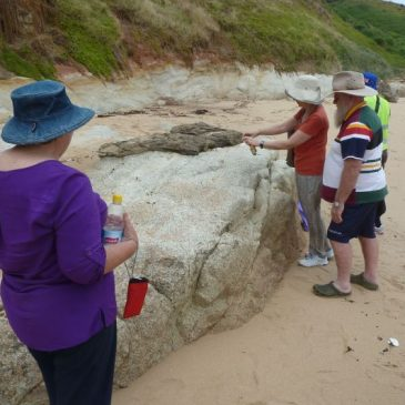 Geology excursion at Phillip Island, Australia, examines evidence for global Flood of Noah's time