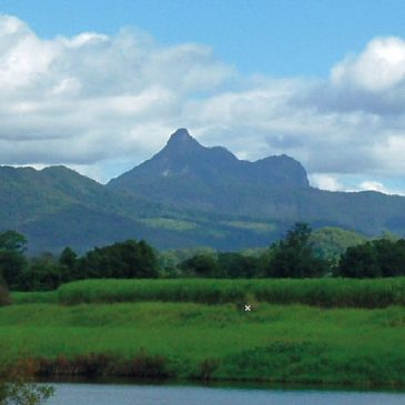 Mount Warning, New South Wales, erupted late in Noah's Flood