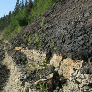 Canadian oil sand deposits explained by biblical geology