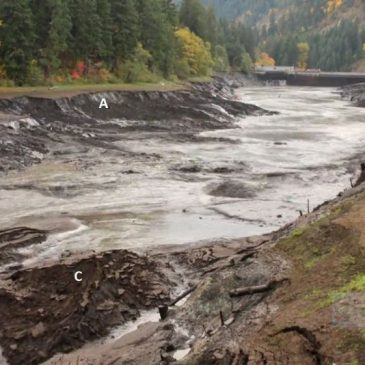 Draining Condit Dam, Washington State, shows effects of receding floodwater