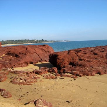Phillip Island Excursion Site 19: Red Rock Point