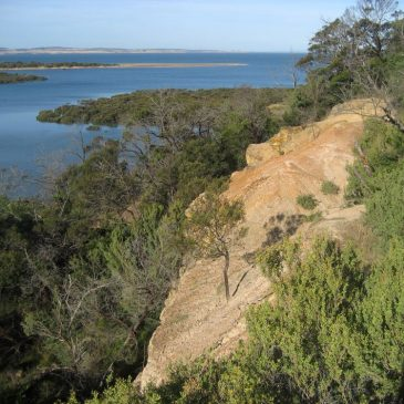 Phillip Island Excursion Site 17: Rhyll Inlet and Diamond Dolly Quarry